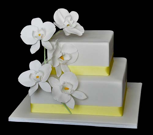 Classic two tier square white wedding cake garnished with white Phalaenopsis Orchids
