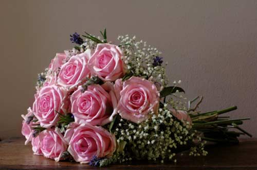 Pink rose flower bouquet with