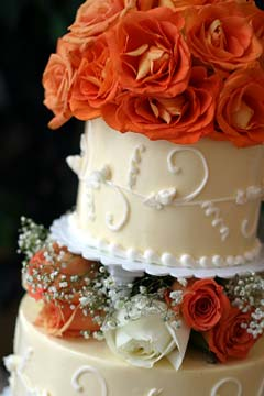 elegant, three tier cream wedding cake decorated with fresh orange and white roses and a delicate touch of babies breath