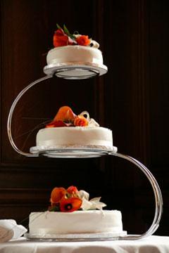 satellite wedding cake