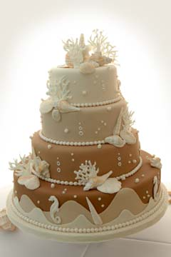Four tier, white, beige and brown beach theme wedding cake embellished with natural seashells