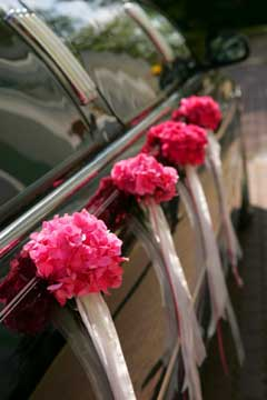 wedding car decorations - fushcia corsages and white ribbon