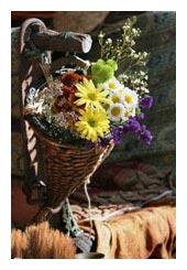 cone bouquet - bridal bouquets
