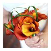 nosegay bouquet - bridal bouquets